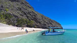 Wildlife Experiences-Mayotte-Safari dauphins et raies manta, Ile de Mayotte-4