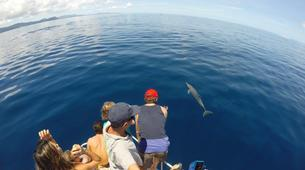 Wildlife Experiences-Mayotte-Safari dauphins et raies manta, Ile de Mayotte-6