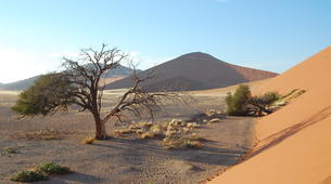 Safari-Windhoek-3 Day Sossusvlei tour in Namib Desert-6