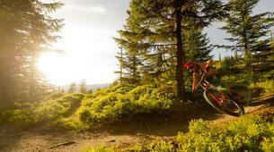 Mountain bike-Hafjell-Downhill Mountain Biking in Hafjell-2