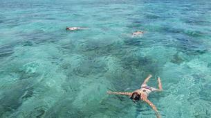 Snorkeling-Port-Louis, Grande-Terre-Excursions bateau et snorkeling à Port Louis, Guadeloupe-4