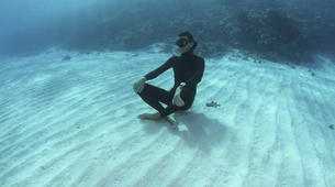 Freediving-Hyeres-Relaxation diving in Hyeres, France-1