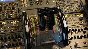 Air Experiences-Venice-Airbus A320 Flight Simulator Experience near Venice-2