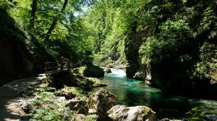 Mountain bike-Bled-E-bike trip in Vintgar Gorge and Lake Bled, Slovenia-2