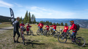 Mountain bike-Hafjell-Downhill Mountain Biking in Hafjell-3
