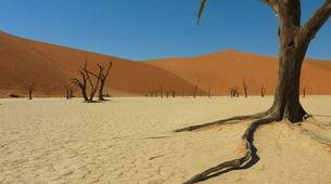 Safari-Windhoek-3 Day Sossusvlei tour in Namib Desert-2