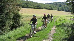 VTT-Dijon-Découverte de la Bourgogne en vélo électrique-2