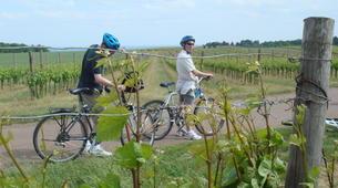 VTT-Dijon-Découverte de la Bourgogne en vélo électrique-4
