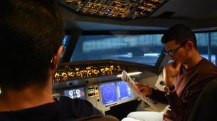 Air Experiences-Venice-Airbus A320 Professional Flight Simulator Experience for Pilots near Venice-4