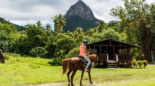 Sailing-Gros Islet-Land & Sea Island Tour in St. Lucia-4