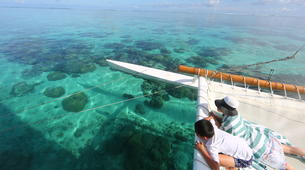 Sailing-Moorea-Sailing excursion in Moorea-9