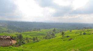 Quad-Tabanan-Northern Bali Highlands ATV Adventure in Tabanan, Bali-5