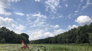 Kayaking-Koviljsko-petrovaradinski rit-Kayaking in the Koviljski Rit Natural Reserve, Serbia-2