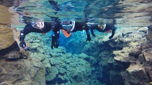 Snorkeling-Silfra-Snorkeling trip in the Silfra Fissure-5