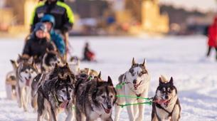 Snowshoeing-Luleå-Snowshoe & Dog Sled Adventure in Swedish Lapland-1