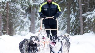 Dog sledding-Luleå-Drive Your Own Dog Sled in Swedish Lapland-3