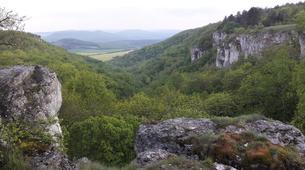 Stage de Survie-Dijon-Stage de survie trappeur en forêt au Nord de Dijon, Bourgogne-3