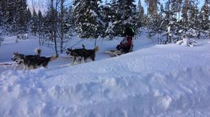 Snowshoeing-Luleå-Snowshoe & Dog Sled Adventure in Swedish Lapland-2