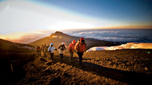 Randonnée / Trekking-Kilimandjaro-Mt. Kilimanjaro Summit Hike-1