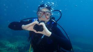 Plongée sous-marine-Catane-Try Scuba Diving in Cyclops Islands Marine Protected Area near Catania-4