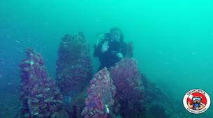 Scuba Diving-Sozopol-Scuba Diving experience in Sozopol, Bulgaria-3