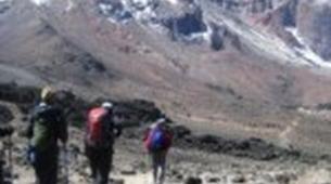 Hiking / Trekking-Mount Kilimanjaro-Mt. Kilimanjaro Summit Hike-10