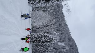 Snowshoeing-Morzine, Portes du Soleil-Snowshoeing and igloo building in Morzine, Portes du Soleil-3