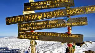 Hiking / Trekking-Mount Kilimanjaro-Mt. Kilimanjaro Summit Hike-11