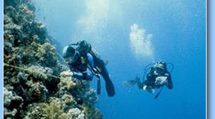 Plongée sous-marine-Ile Maurice-Initiation plongée, île Maurice-6