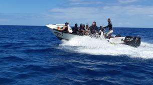 Plongée sous-marine-Ile Maurice-Initiation plongée, île Maurice-5