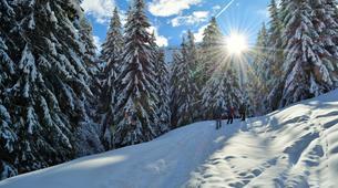 Snowshoeing-Morzine, Portes du Soleil-Snowshoeing excursion in Morzine, Portes du Soleil-2