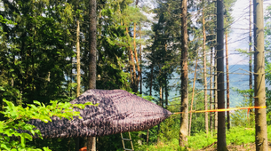 Canyoning-Black Forest-Canyoning tour with tree tent Overnight in the Black Forest-1