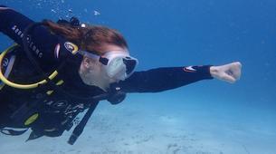 Scuba Diving-Palma, Mallorca-Scuba Diving in a marine reserve near Palma, Mallorca-4