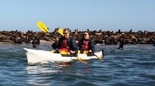 Sea Kayaking-Walvis Bay-Sea Kayaking excursion in Walvis Bay, Namibia-2