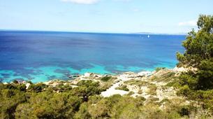 Scuba Diving-Palma, Mallorca-Scuba Diving in a marine reserve near Palma, Mallorca-2