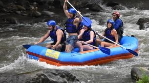 Rafting-Ubud-Ayung River Rafting and Quad Bike Excursion in Bali, Indonesia-2