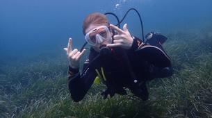 Scuba Diving-Palma, Mallorca-Scuba Diving in a marine reserve near Palma, Mallorca-5
