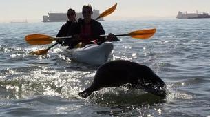 Sea Kayaking-Walvis Bay-Sea Kayaking excursion in Walvis Bay, Namibia-1