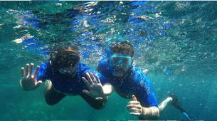 Snorkeling-Terceira-Snorkeling in Terceira, Azores. Shore experience-1