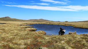 Hiking / Trekking-Saint Pierre and Miquelon-Randonnée à Miquelon dans l'archipel de Saint-Pierre-et-Miquelon-1