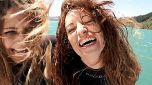 Wildlife Experiences-Akaroa-Swimming with Dolphins in Akaroa-7