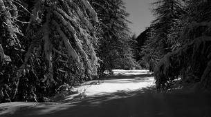 Snowshoeing-Mercantour National Park-Snowshoeing under the stars in Mercantour national park-1
