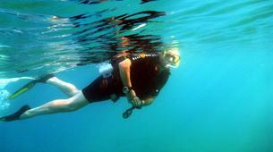 Snorkeling-Costa Adeje, Tenerife-Snorkeling excursion from Costa Adeje, Tenerife-1