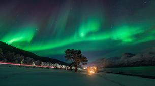 Glisse alternative-Tromsø-Northern Lights Minibus Chase, Tromso-2