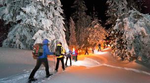 Snowshoeing-Saint-Lary-Soulan-Snowshoeing night excursion in Saint-Lary-Soulan with tartiflette, Pyrenees-1