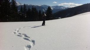 Snowshoeing-Chamonix Mont-Blanc-Snowshoeing excursion in Chamonix-5