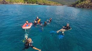 Snorkeling-Réserve Cousteau-Randonnée palmée dans la réserve naturelle Cousteau en Guadeloupe-2