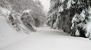 Snowshoeing-Saint-Lary-Soulan-Snowshoeing Week-end near Saint-Lary-4