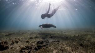 Apnée-La Dominique-Découverte de la plongée en apnée dans le lagon de Portsmouth, La Dominique-2