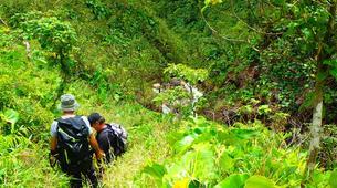 Randonnée / Trekking-La Soufrière-Randonnées sur la Soufrière en Guadeloupe-7